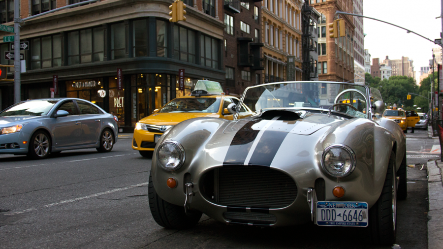 Shelby in the streets of New York City